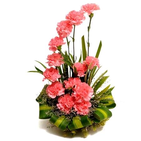 Garoafe Roz - Flori in Baia Mare
