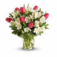 2 - Flori in Baia Mare