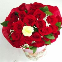 21 Trandafiri -Flori Baia Mare