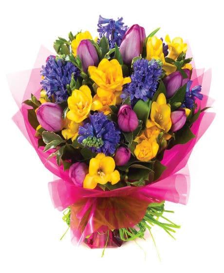 Buchet-flori-8-martie-zambile-mov-lalele-mov-si-frezii-galbene