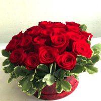 Floraria Flori in Baia Mare va ofera - 25 TRANDAFIRI