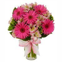 astromelia roz Picaturi de ploaie - Flori Baia Mare