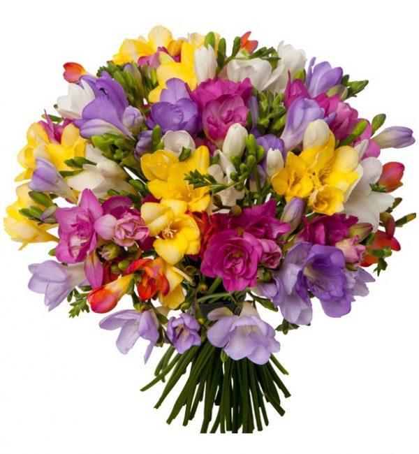 Parfum de primavara - Flori in Baia Mare