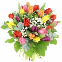 bouquet-tulipes-gypsophile-600x600