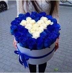 6936c70964bd7d4c1fced050c9b26ced--blue-roses-blue-flowers