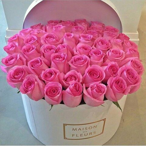 beautiful-box-flowers-pink-Favim.com-2554136