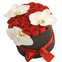 Red_Roses_and_Birds_Hat_Box_480x480