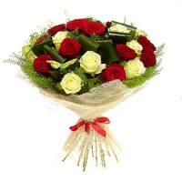19 TRANDAFIRI - Flori in Baia Mare