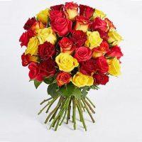 Trandafiri colorati - Comanda online Flori in Baia Mare