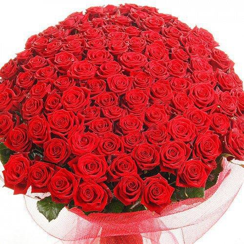 101 Trandafiri Rosii - Flori in Baia Mare